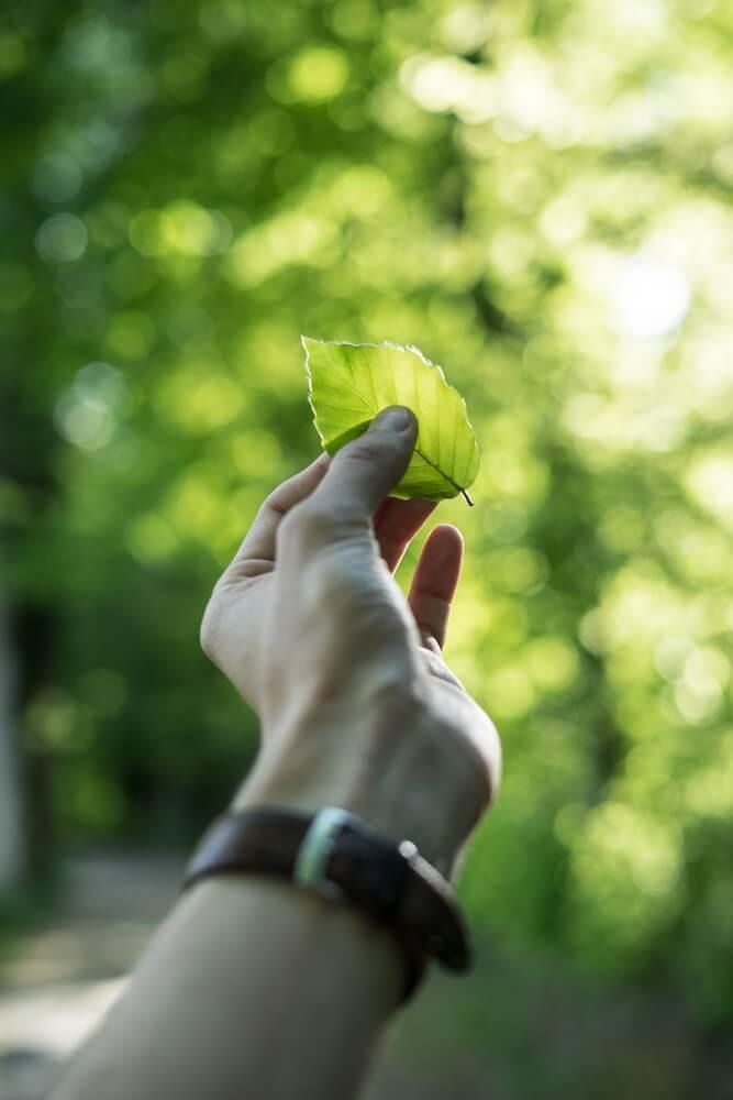 Nachhaltigkeit bei etolit