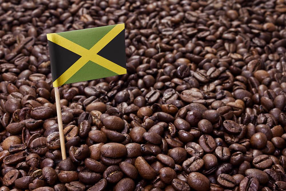 Jamaica Blue Mountain Bohnen