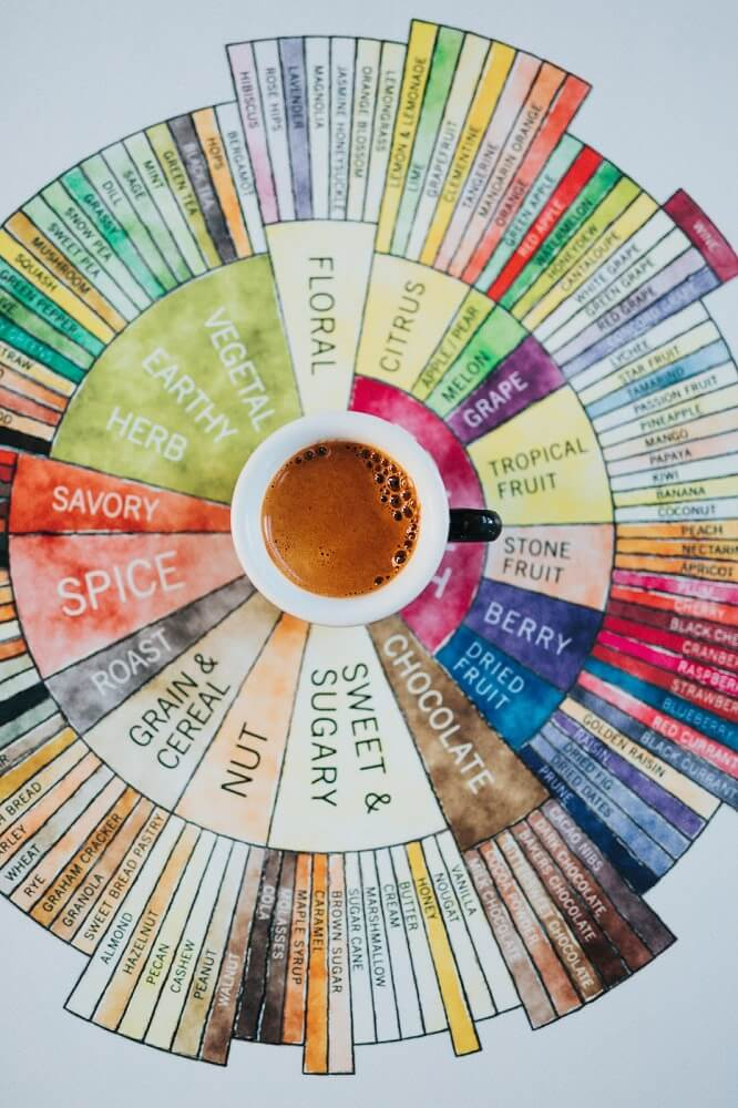 SCA Coffee Flavour Wheel