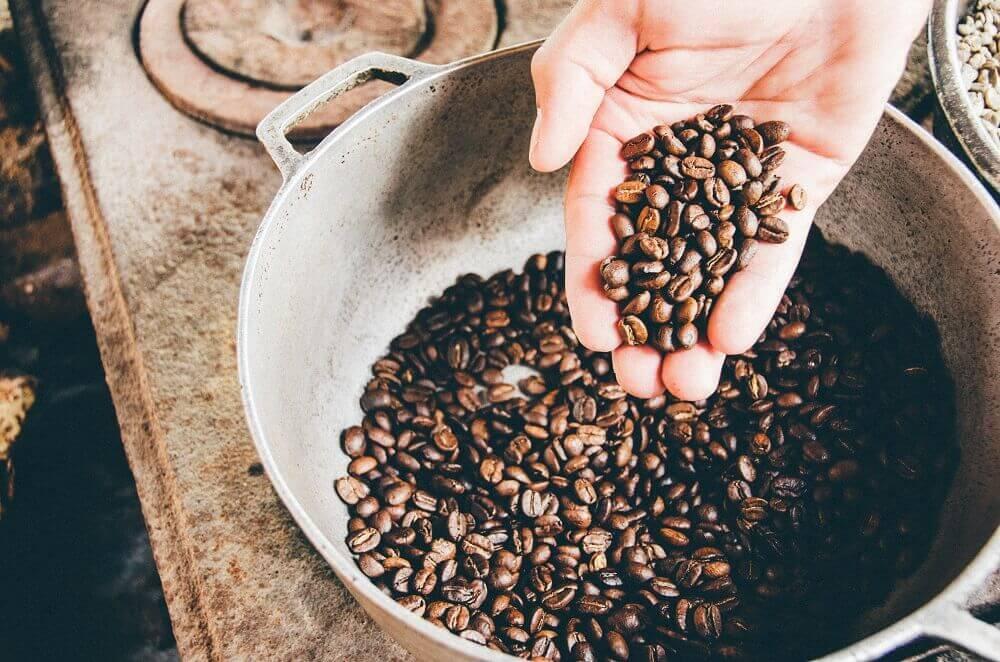 Qualitätscheck der Kaffeebohnen