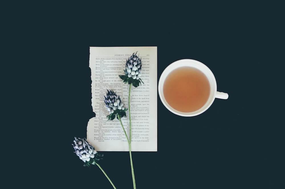 Teetasse neben Batt Papier und darauf liegender Pflanze