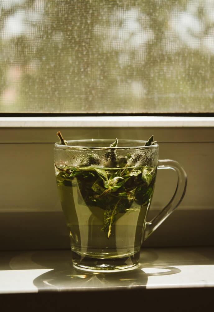 grüner Tee von Paper & Tea