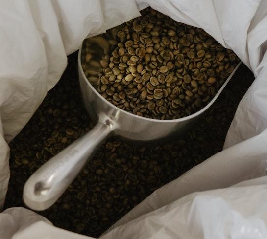 frische Kaffeebohnen aus Guatemala von Passalacqua