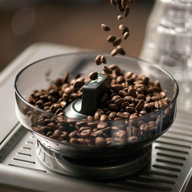 Sage Siebträger Mahlwerk mit frischen Kaffeebohnen