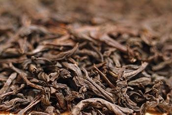 Blätter des Darjeeling Tee