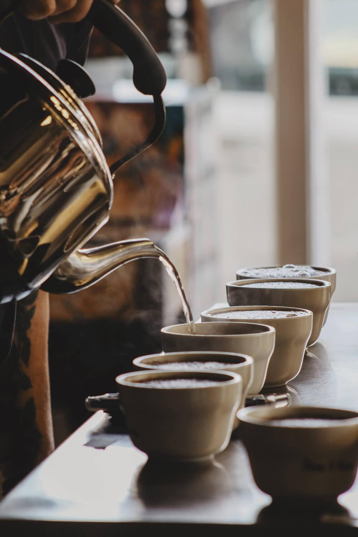 Wittmann Kaffee Auslese